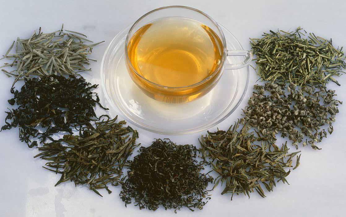 红茶里面真的有茶多酚吗?